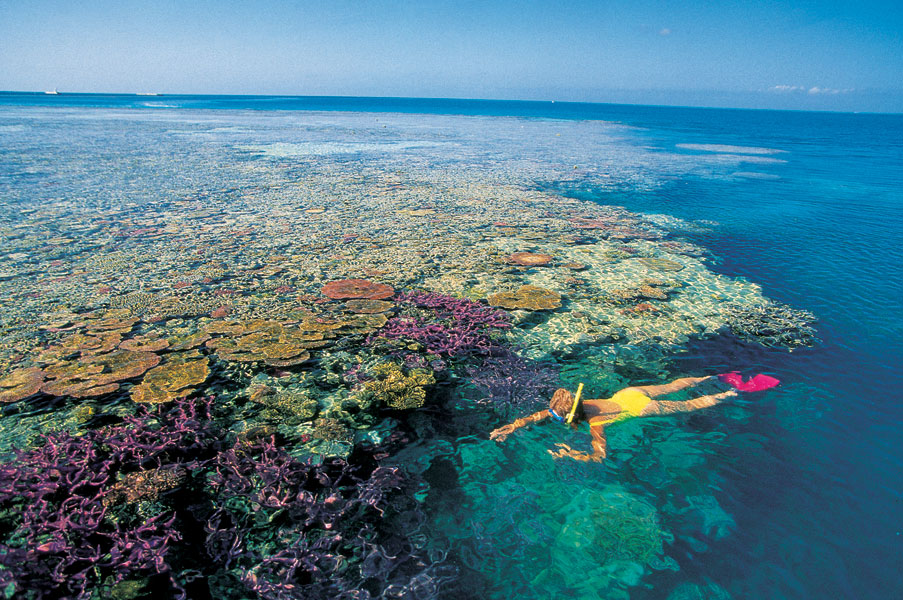 Great-Barrier-Reef-australia-8